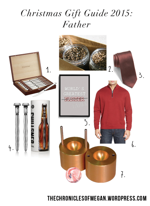 chrofmeg_giftguide15-father